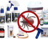 Insecticida para garrapatas: producto, veneno para fumigar