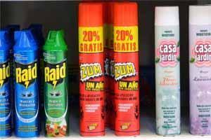 Insecticida para pulgas en casa mejor para eliminar plaga en patio jard n - Matar pulgas en casa ...